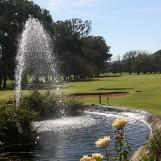 2017-golf-day-33