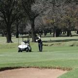 2017-golf-day-40